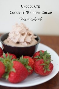 Chocolate-Coconut-Milk-Whipped-Cream